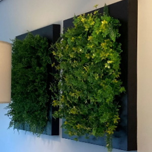 Green wall in frame