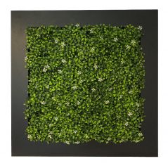 Green wall in frame (artificial Jasmine hedge) 67x67 cm